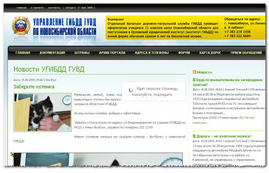Котёнок на сайте ГИБДД Новосибирской области