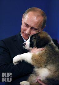 Путин и каракачанский щенок