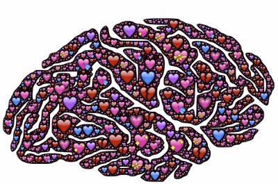 Мы и наш мозг